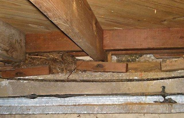 how to replace sill plate in crawl space